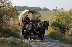 Horse transport at Kap Arkona - Pferdekutsche bei Kap Arkona - Rügen