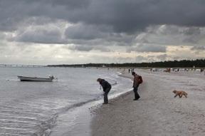 Am Strand von Prerow, Darß