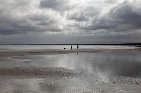 Darßer Nordstrand - Nationalpark Vorpommersche Boddenlandschaft