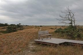 Ostseehalbinsel Darß - Nationalpark Vorpommersche Boddenlandschaft