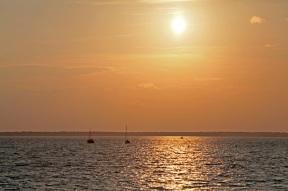 Bootsausflug zur Kranichbeobachtung bei Prerow - Ostseehalbinsel Darß