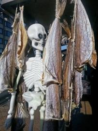 Stockfisch und Helloween Dekoration an einer Fischbude am Hafen