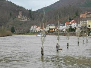 Neckar + Neckarsteinach + Hinterburg