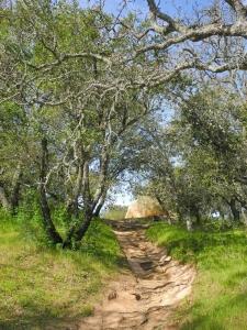 Wanderung auf den Mount Diablo