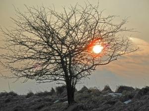 Sonnenuntergang im Brieltal