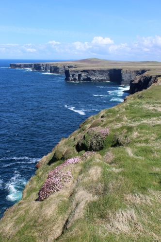 Cliffs at Loop Head, County Clare, Ireland