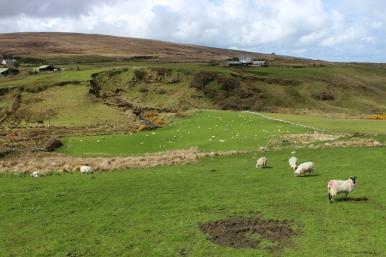 Landscape close to Céide Fields, County Mayo, Ireland