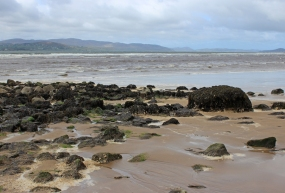 At the mouth of the Crana river, which flows into Lough Swilly, County Donegal, Ireland