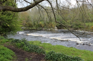 The Crana River, Buncrana Heritage Trail, County Donegal, Ireland