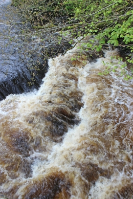 The Crana River looks like Guinness, County Donegal, Ireland