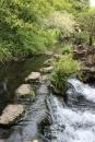 Pray to the Gods - Japanese Gardens - The Irish National Stud - Kildare