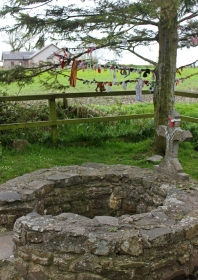 Wishlists - Saint Brigid's Well, Kildare