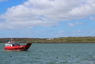 The Yoker Swan coming back to Baltimore Harbour, West Cork, Ireland