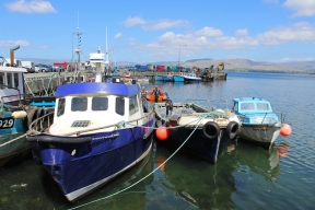 Bantry Harbour, County Cork, Ireland