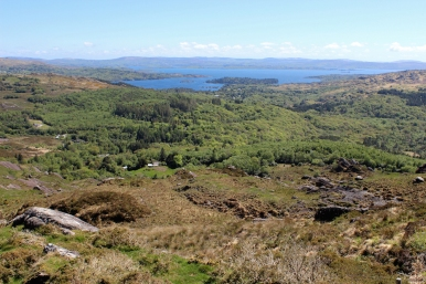 Glengarriff Nature Reserve, County Cork, Ireland