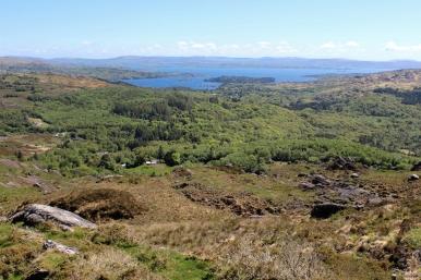 Glengarriff Nature Reserve, County Cork, Ireland