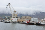 Victoria and Albert Harbour, Cape Town, South Africa