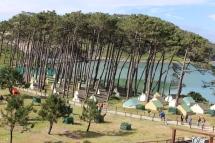 Camping Islas Cies, Galicia, Spain