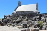 Hop at the top of table mountain, table mountain national park, cape town, western cape province, south africa