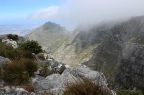 On top of Table Mountain, South Africa