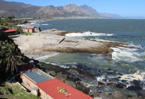 Hermanus, Old Harbour, Western Cape, South Africa