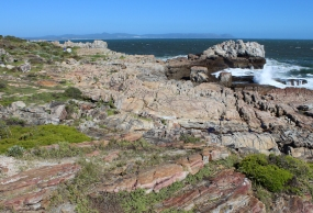 Hermanus Cliff Path Walk, Western Cape, South Africa