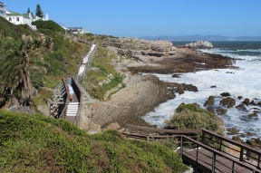 Hermanus Cliff Path Walk, Western Cape, South Africa