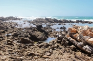 Coast at Cape Agulhas, Western Cape, South Africa