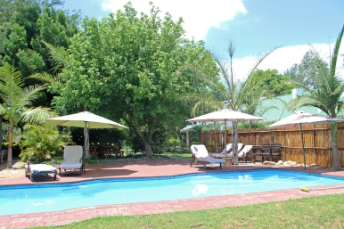 Pool at De Old Drift Guest Farm - Addo - South Africa