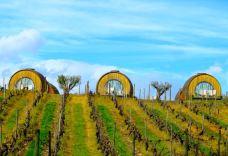 Quinta da Pacheca Wine House Hotel Wine Barrel