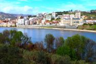 Juncal de Cima, Vila Real