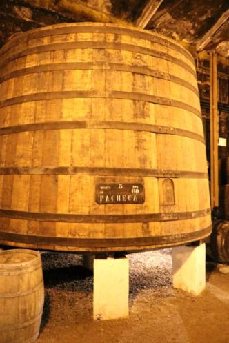 Quinta da Pacheca Wine Cellar