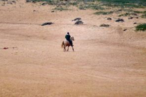 horseback rider on Praia do Norte, North beach, Nazare, Silver Coast, Portugal