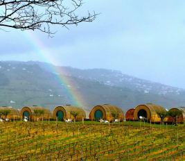 Quinta da Pacheca Wine House Hotel Wine Barrel Rainbow